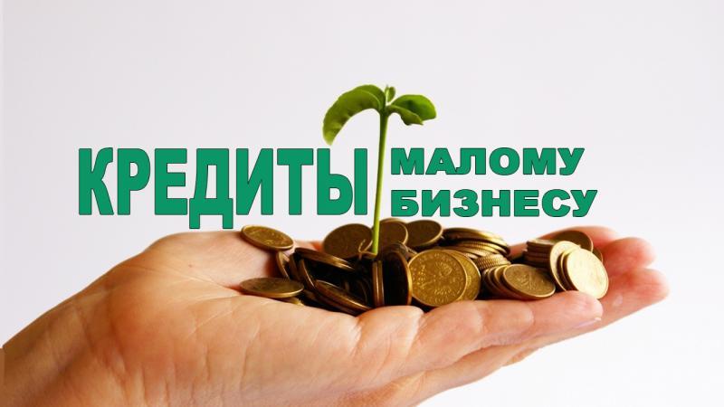 кредит малому бизнесу с нуля без залога и поручителей альфа банк получение займов в бухгалтерском учете